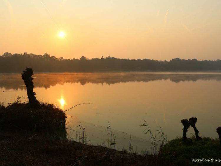 Astrid Velthuis: Indian Summer