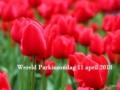 Wereld Parkinson Dag blog 2
